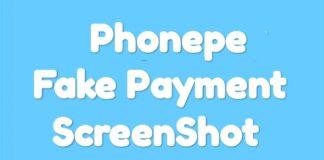 Phonepe payment screenshot generator